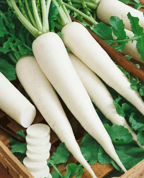 củ cải trắng cho trẻ bị ho