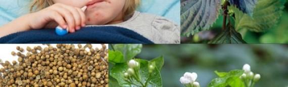 Hướng dẫn các món ăn bài thuốc cho trẻ bị sởi